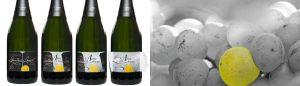 Cuvée L'âme des Blancs, Champagne Gantois-Louvet